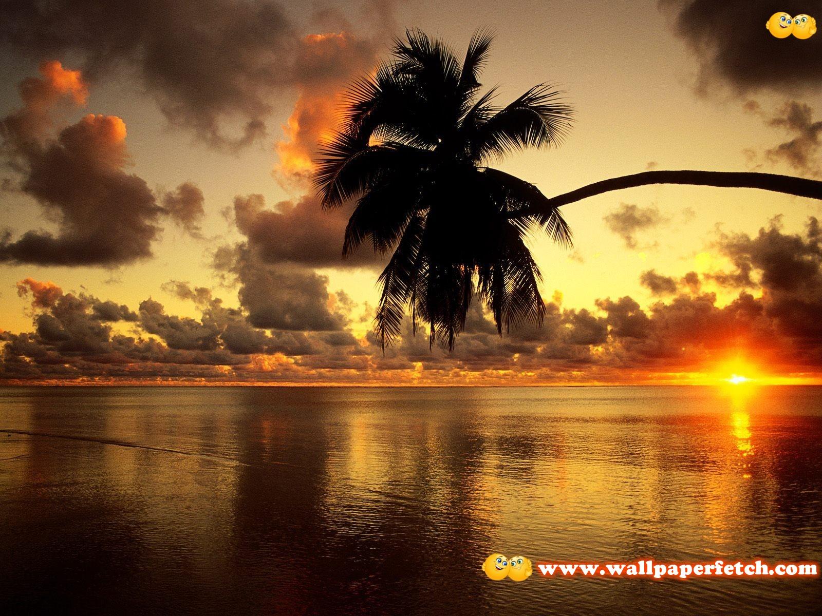 http://1.bp.blogspot.com/-BkayZO1JTEQ/TuNkXz5wGfI/AAAAAAAAJJQ/oyvrbua0mlg/s1600/38.jpg