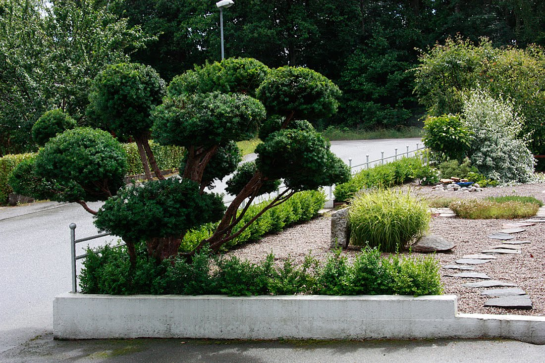 Erixons trädgård: inspiration och stöld