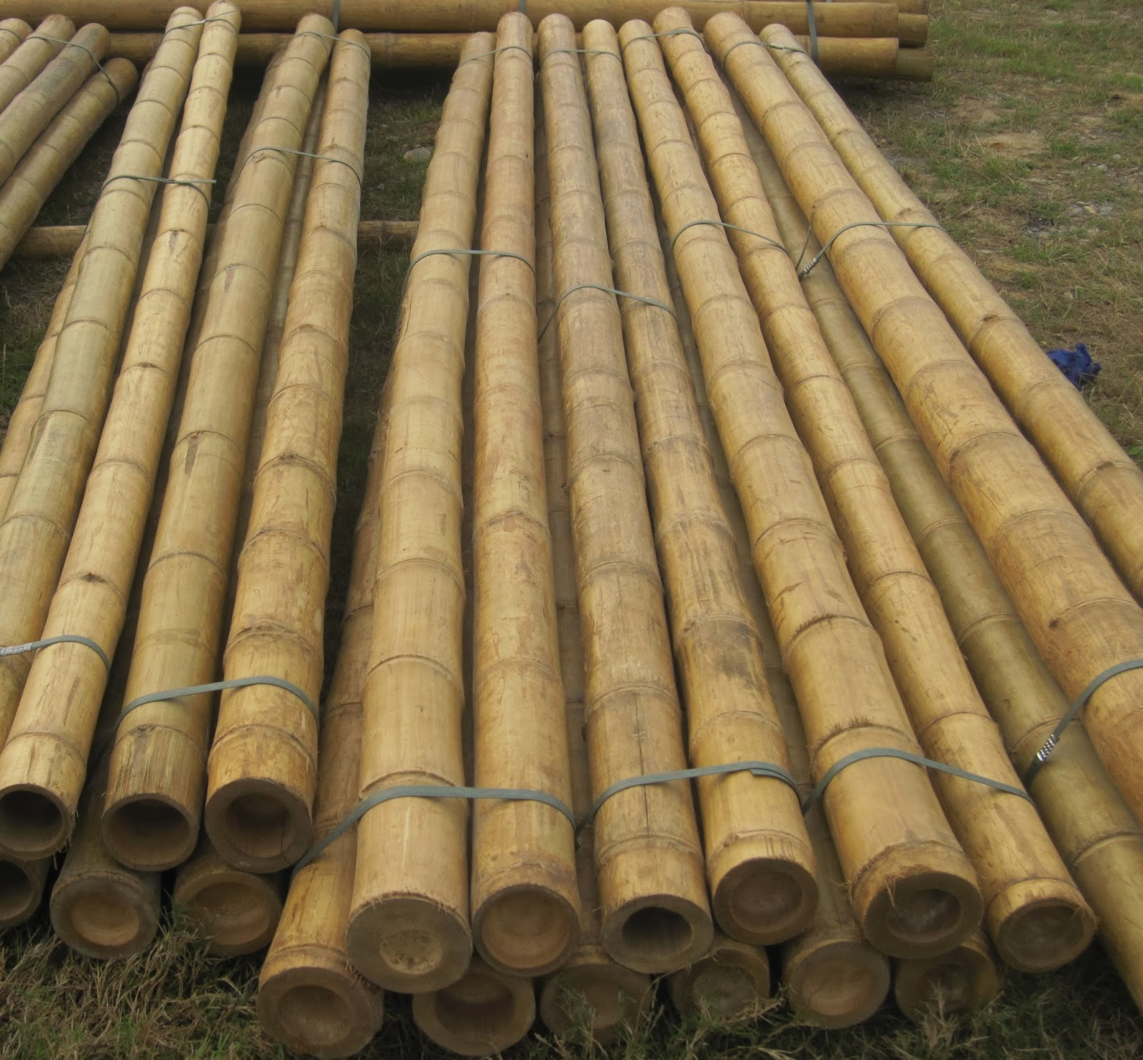 Quality bamboo and asian thatch 2 39 39 for Uses for bamboo canes