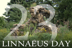 Linnaeus Day