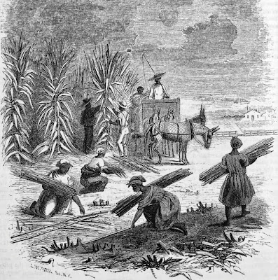 the role and value of slaves and slave markets in the antebellum south Price transmission in the antebellum slave markets: price transmission in the antebellum slave from north to south as northern states abolished slavery.