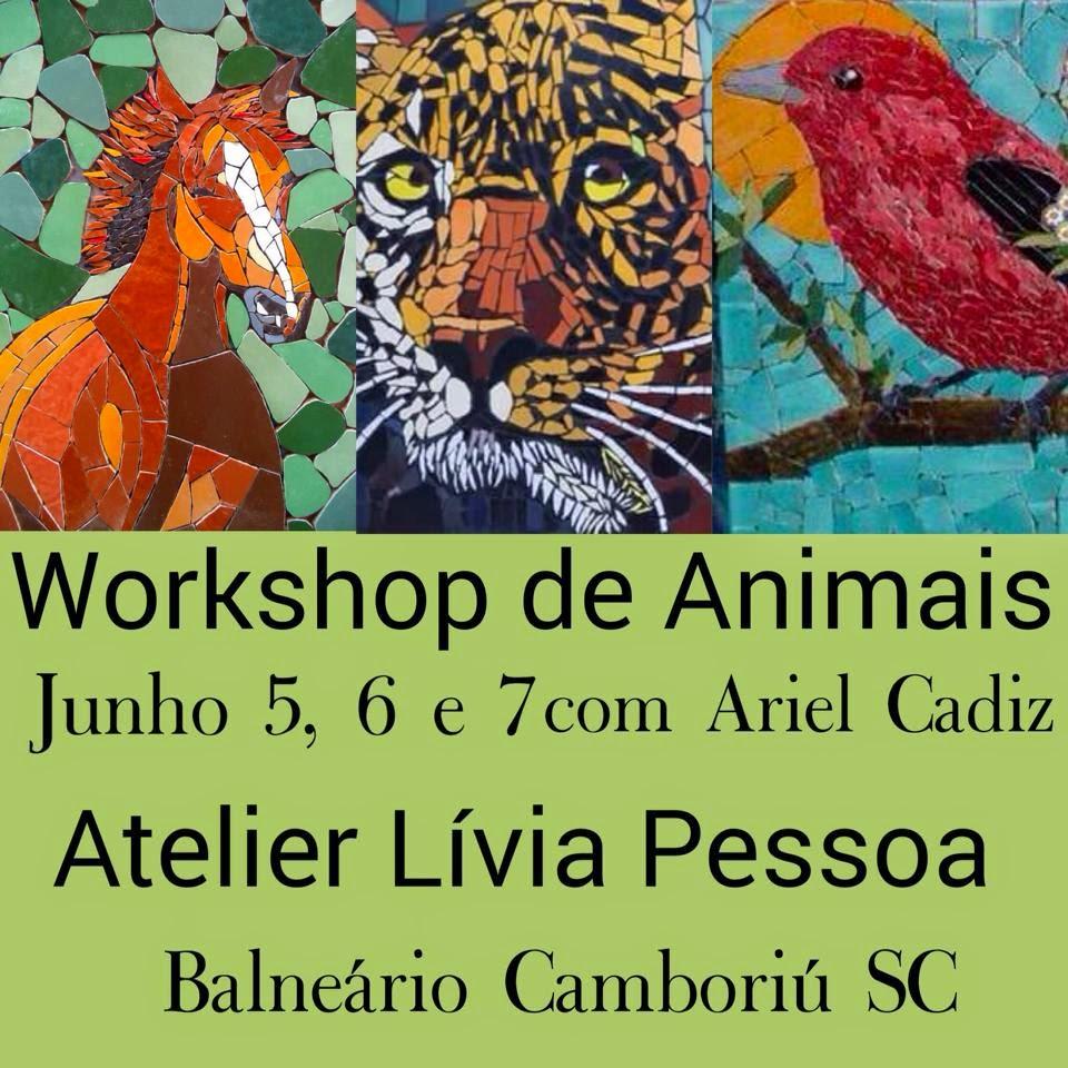 Workshop de Animais/Balneário Camboriú