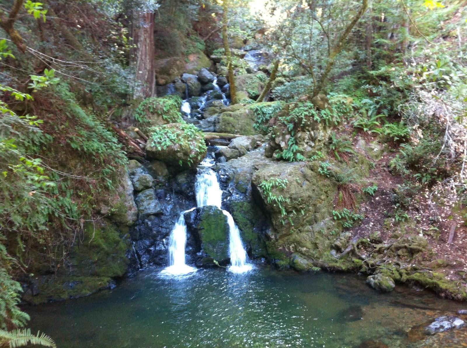 Outdoorsy Mama Amp Lotl Photography Bay Area Hikes Go Now