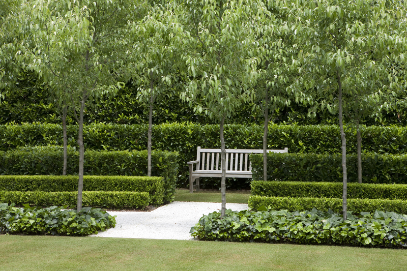A curious gardener garden designer peter fudge for Garden design ideas with hedges