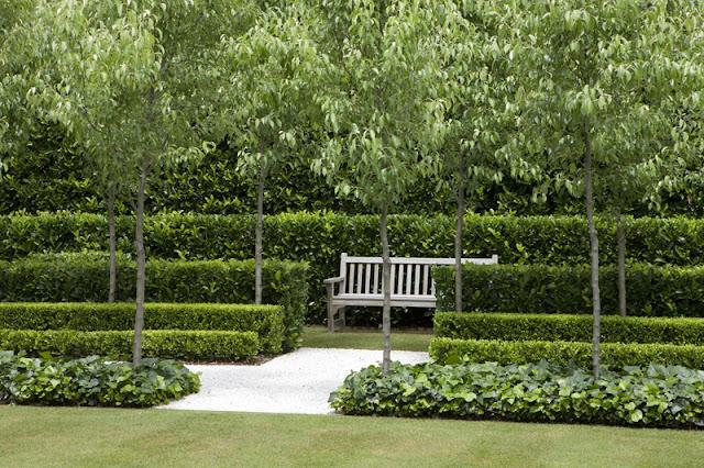 a curious gardener: garden designer Peter Fudge