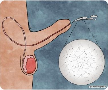 Problemas para eyacular durante el sexo