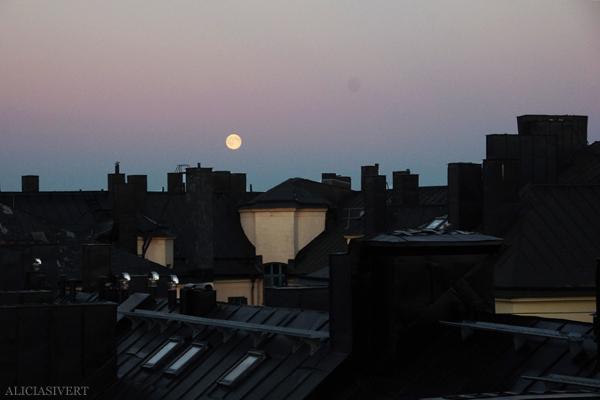 aliciasivert, alicia sivert, alicia sivertsson, måne, månen, fullmåne, fullmånen, full moon, hus, hustak, tak, stockholm, skyline, houses, house, roof, roof top