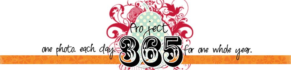 365 in 2011