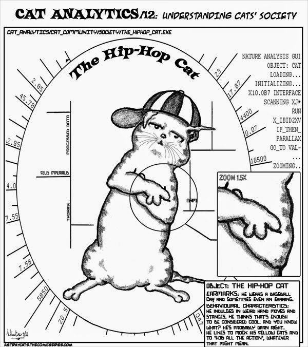 "CAT ANALYTICS/12: ""The Hip Hop cat"""