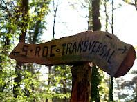 Rètol indicador del camí transversal a Sant Roc i a la Creu de Gurb