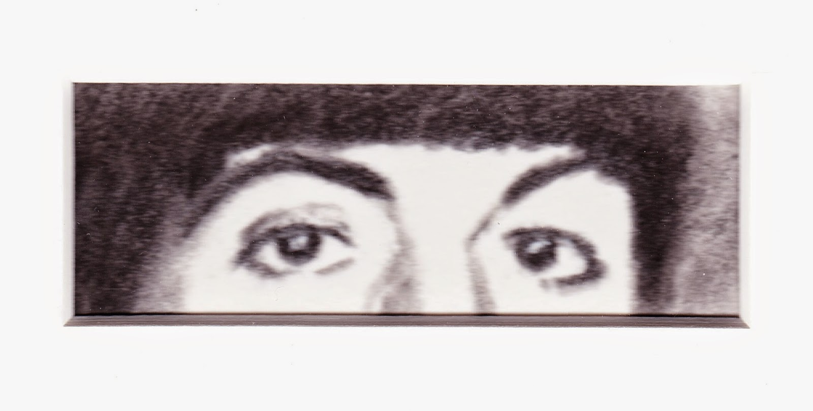 Eyes of Paul McCartney by F. Lennox Campello