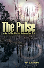 Book I of The Pulse Series: A Solar EMP Thriller