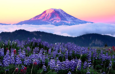 Cintai Keindahan Alam