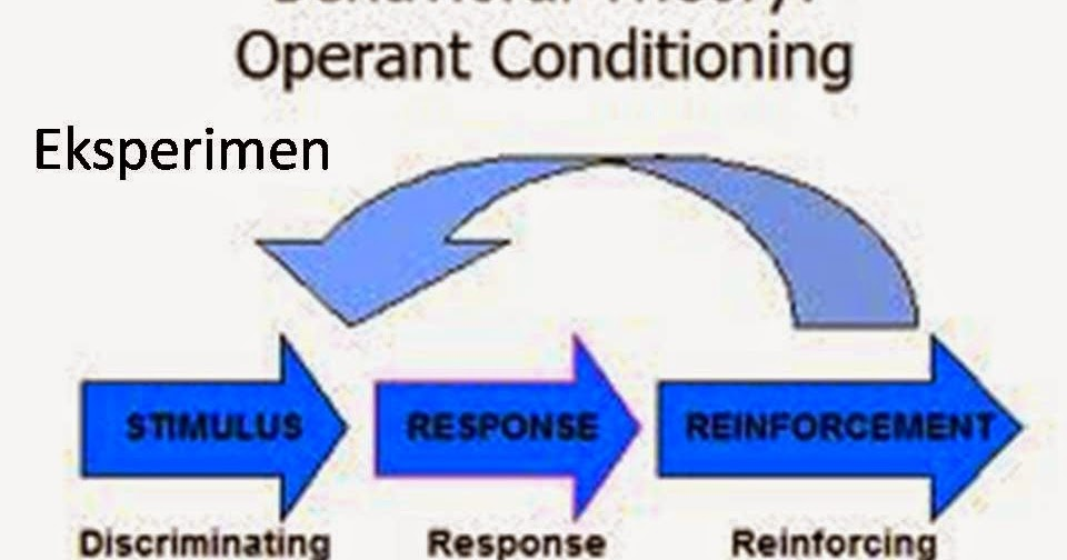 operant conditioning and personality theories essay Behavioral theory of personality: term papers: operant conditioning - operant - skinners operant conditioning theory bf.