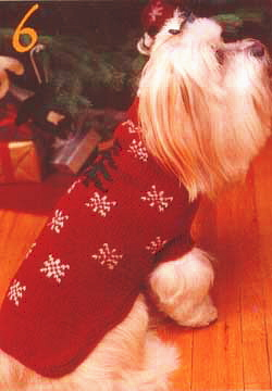 free knitting pattern for dog coats for small dogs - veyuflap