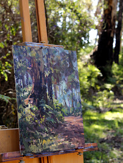 Plein air oil painting - location shot. Karri tree, Porongurup. By Andy Dolphin.