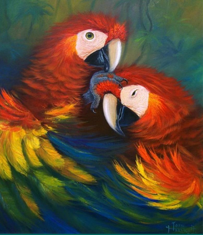 Cuadros modernos pinturas y dibujos cuadros de p jaros - Cuadros con colores calidos ...
