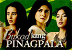 Watch Bukod Kang Pinagpala March 12 2013 Episode Online