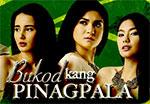 Watch Bukod Kang Pinagpala December 9 2012 Episode Online