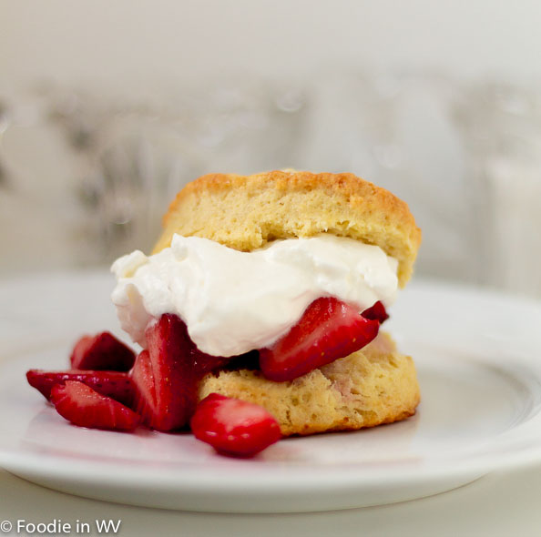Cream Scone with Strawberries and Whipped Cream
