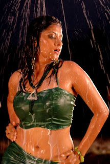 Sindhu Tulani Hot wet naval show while bathing