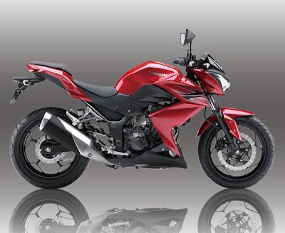 Kawasaki Z250 (2013) Side 1