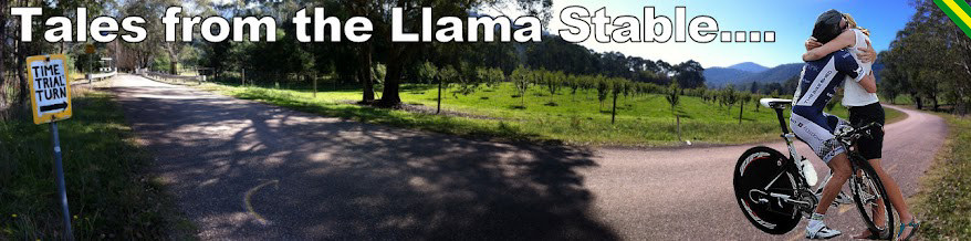 Tales from the llama stable