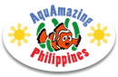 aquamazingphilippines