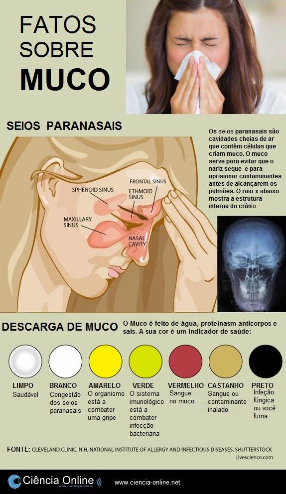 O que seu muco diz sobre a sua saúde (infográfico)