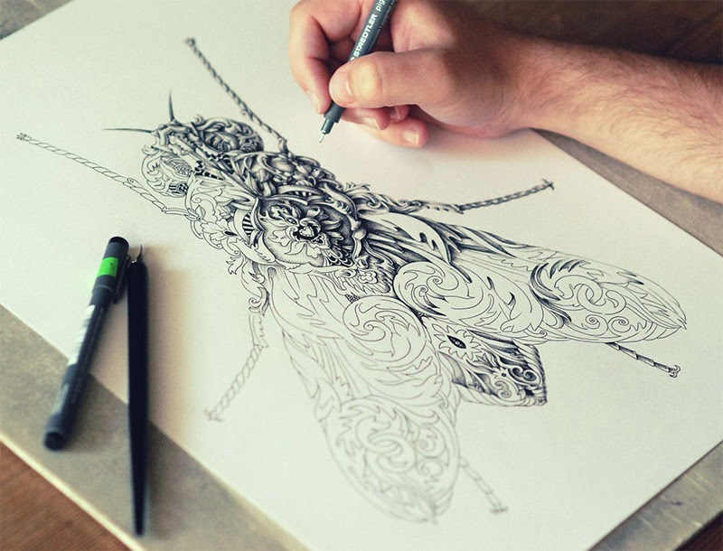 http://www.thisiscolossal.com/2013/11/new-ornate-insects-drawn-by-alex-konahin/