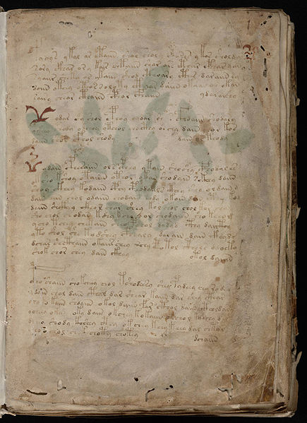 Can You Keep a Secret? The Voynich Manuscript