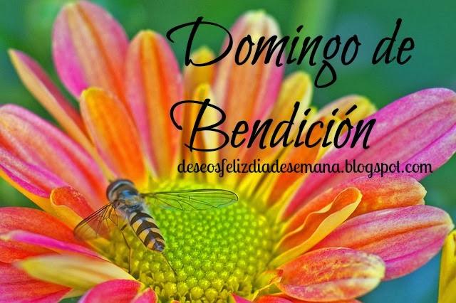 Domingo de Bendición. feliz dia de gozo, imagenes postales tarjetas gratis.