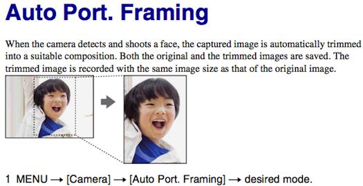 sony nex-f3 manual download pdf