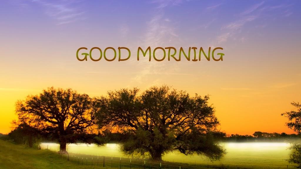 good morning sun Hd Wallpapers | Hindi Motivational Quotes ... Good Morning Friends Wallpaper Hd