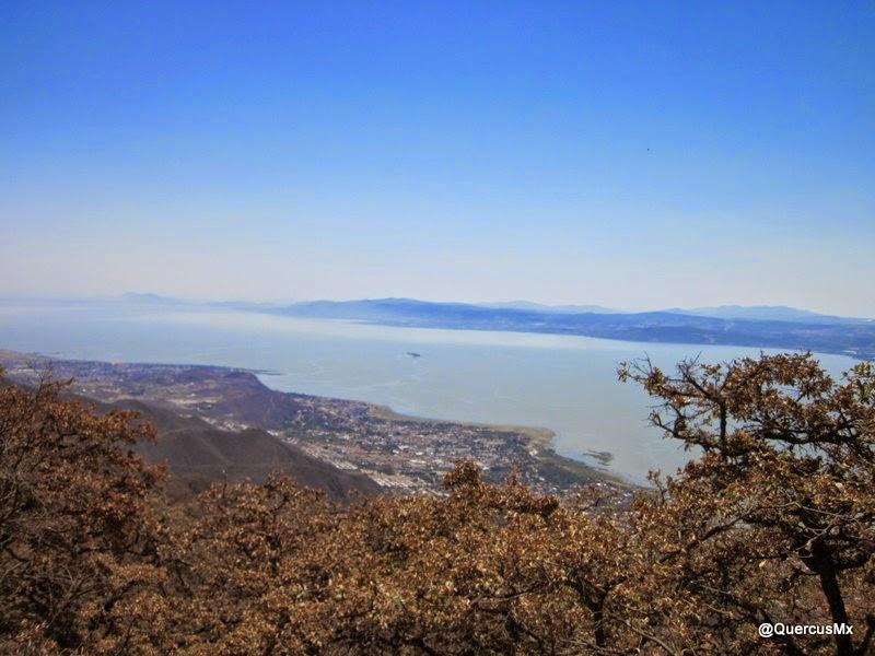 Lago de Chapala visto desde el Cerro La Chupinaya