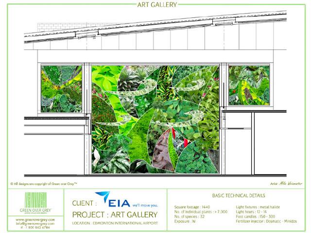 Jardines verticales monterrey julio 2012 for Materiales para un muro verde