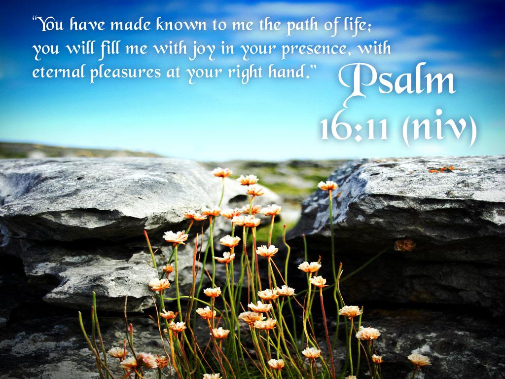 Wonderful Wallpaper Mac Bible Verse - Psalm-16-11-Nature-Background  Snapshot_933090.jpg