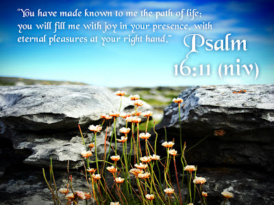 Psalm 16:11 Nature Background