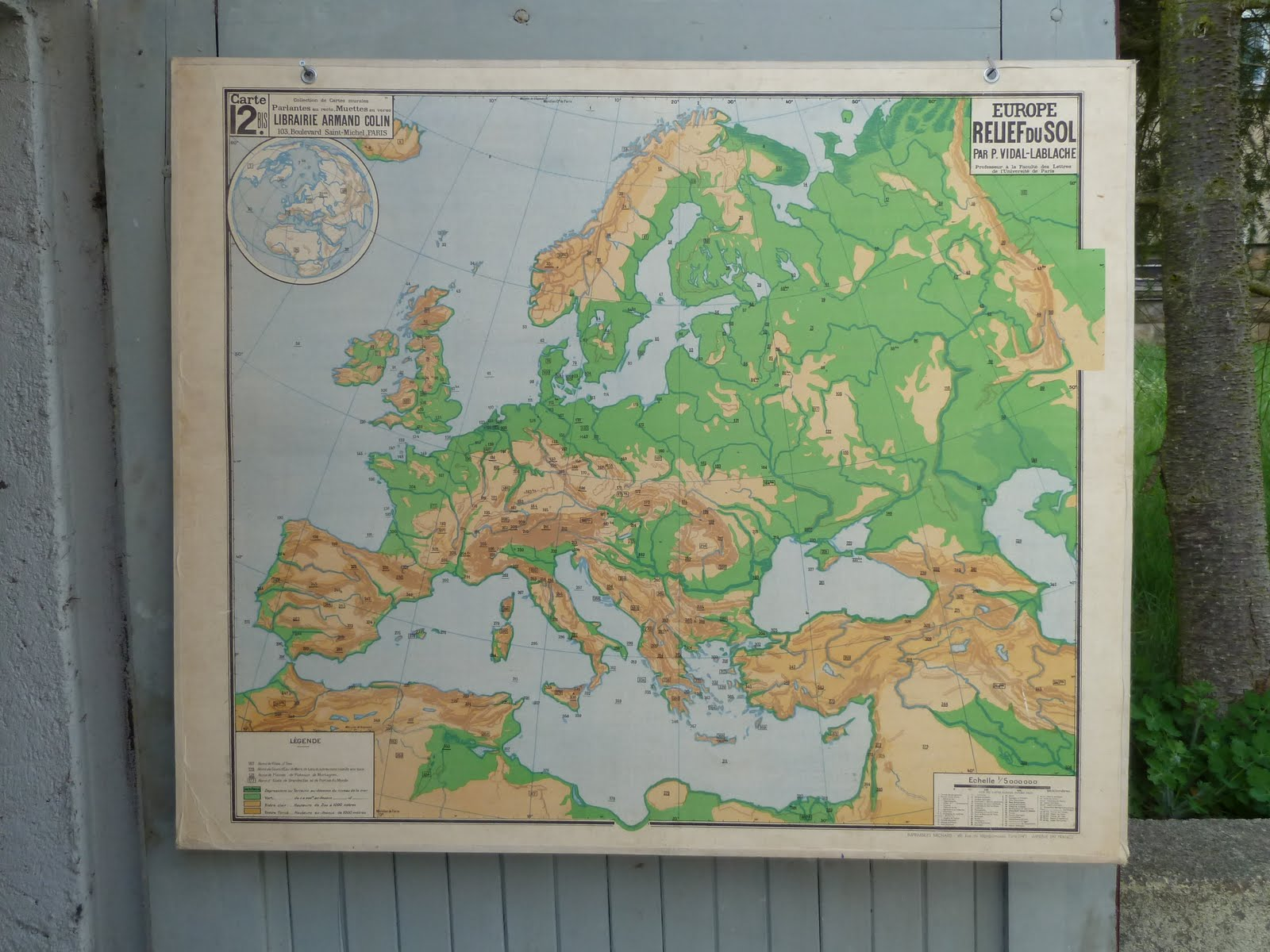 Vintage French Posters Botany Animals Anatomy Old World Maps From - Vintage europe map poster