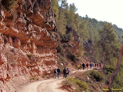 "Planejant sota la Serra de les Roures. Autor: Francesc ""Caminaire"""