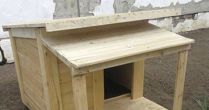 Varias casetas de perros hechas con - Casa de perro con palets ...