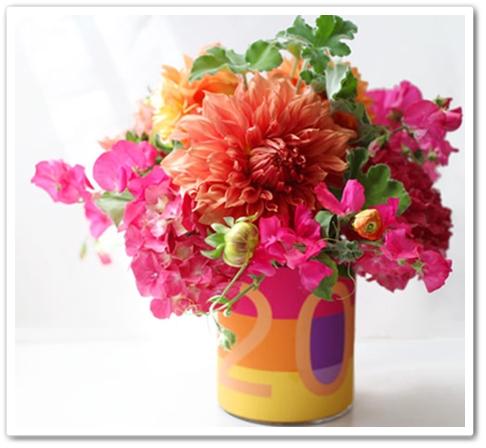 rosa orange dahlia, pink orange dahlia