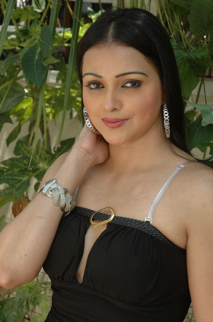 Actress Sonali Joshi Hot Spicy Stills 04 Naveena Navel Images