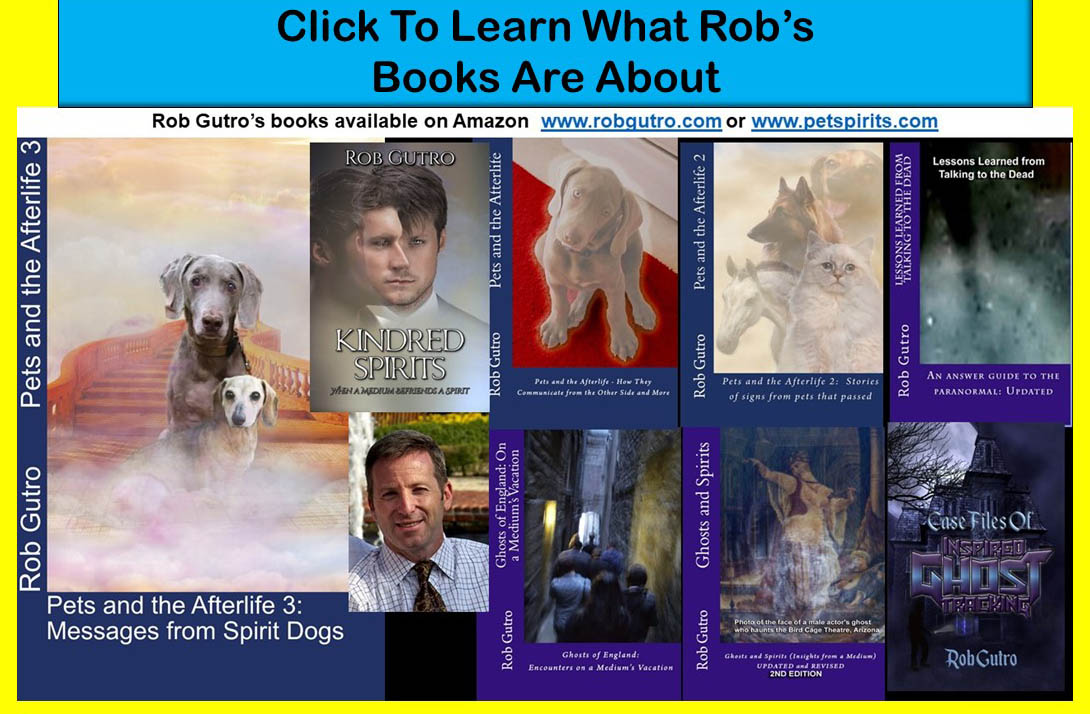 What Rob's Books are About