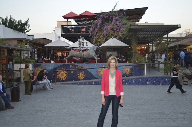 Chile Sightseeing - Strawberry Zara Blazer