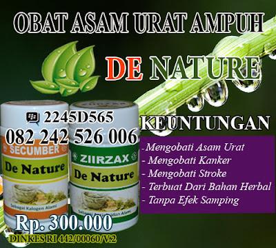 obat tradisional asam urat yang mujarab