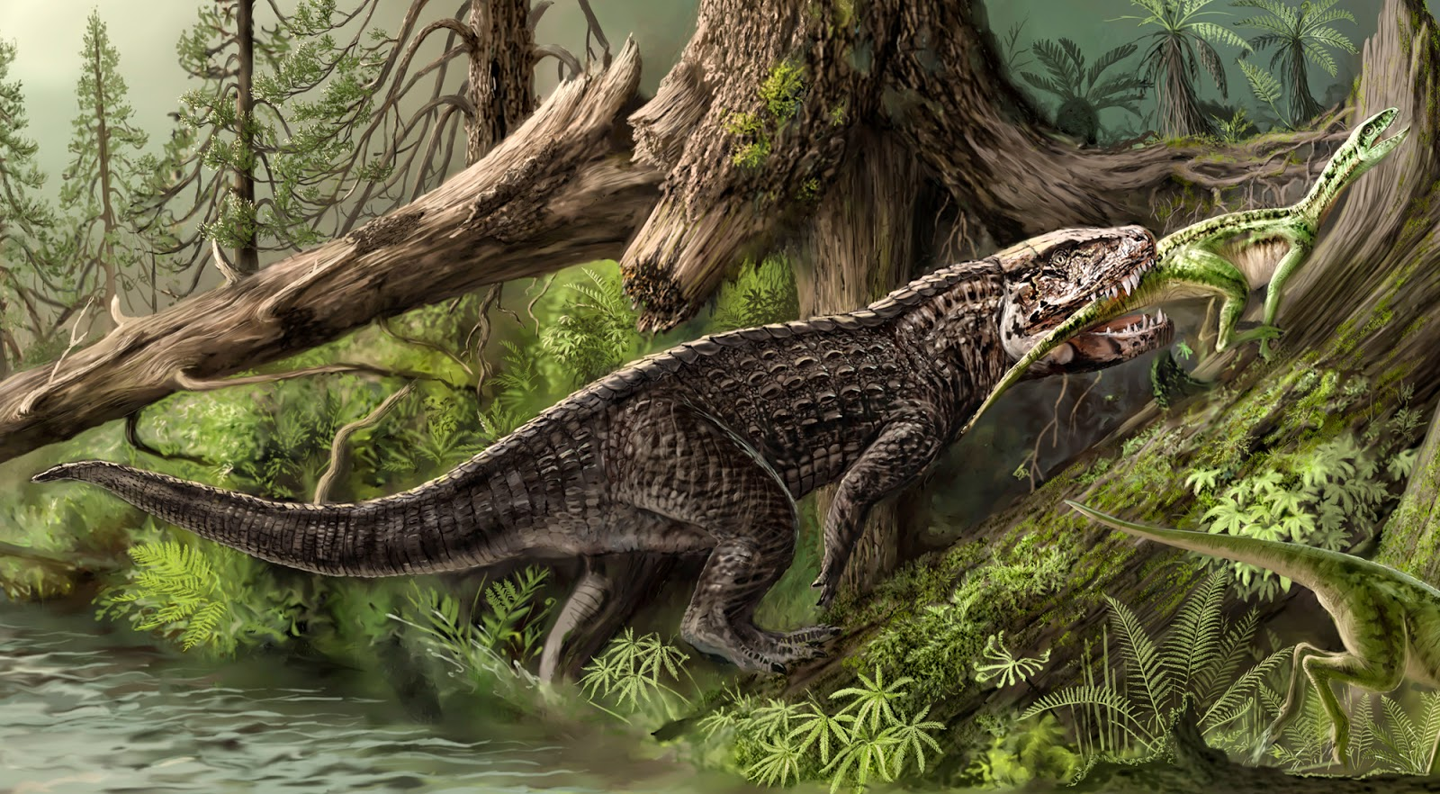 the natural world top five extinct crocodilians