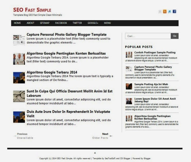 Seo Simple responsive blogger template