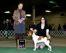 Mel's first show win at 8 months