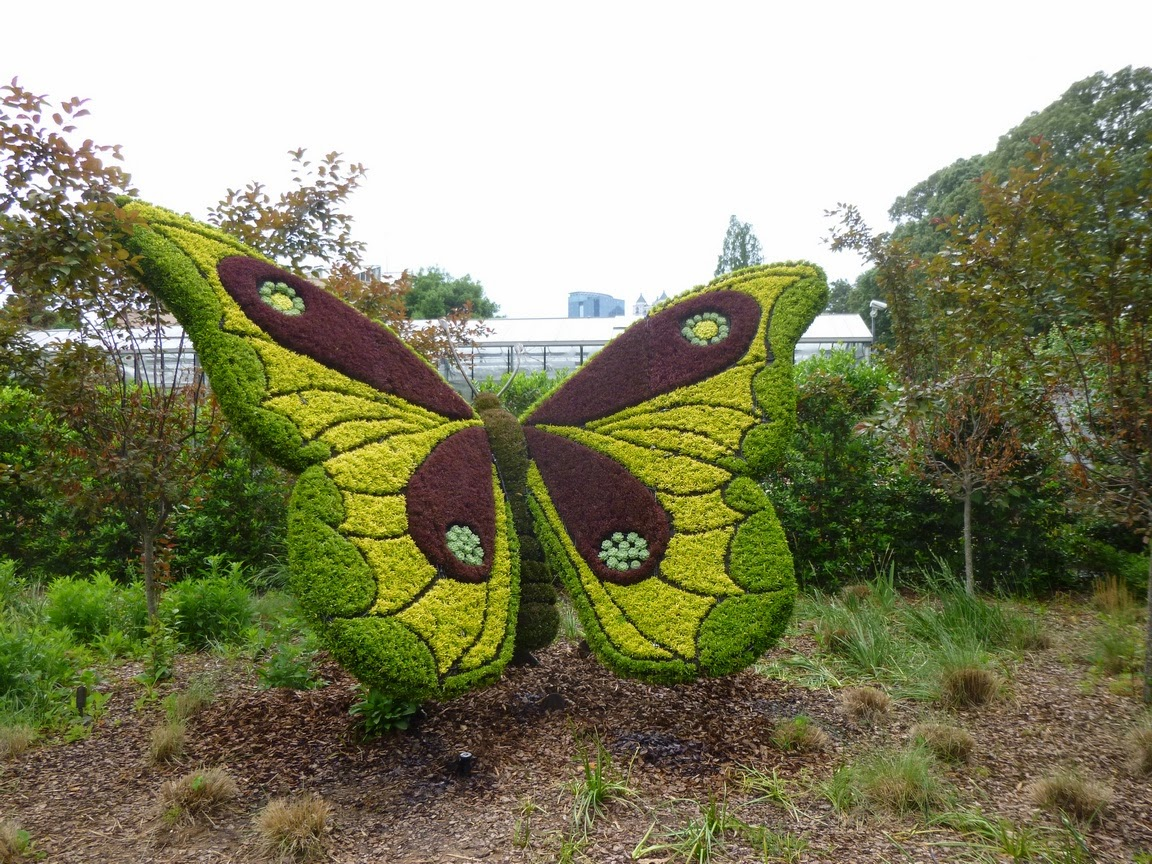 Another butterfly at Imaginary Worlds, Atlanta Botanical Garden